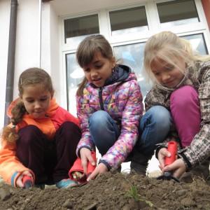 Emma Lena Zahra beim Pflanzen